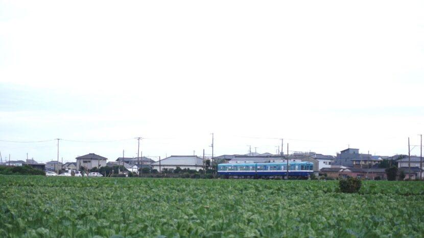 madoo_02_choshi_2